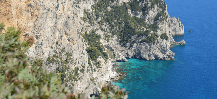 Capri and Positano tour